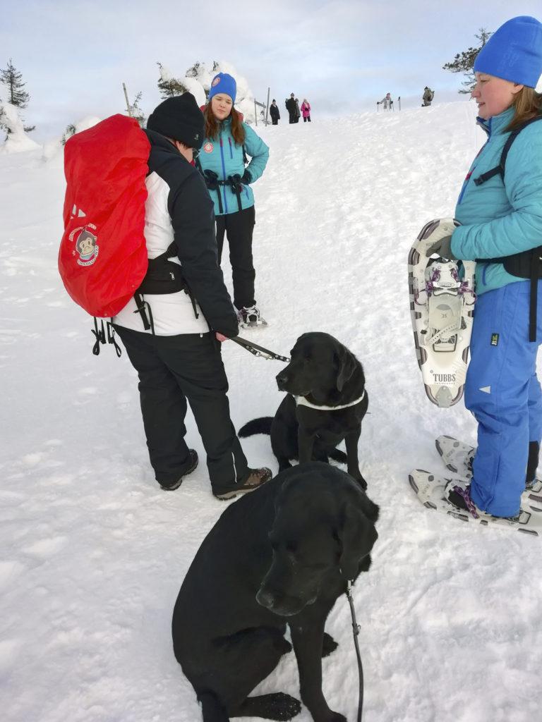 Yhä ylöspäin menossa. Tässä tuumaillaan miten matka jatkuu koska Heidillä lumikengät olivat vain tiellä opaskoira Oton kanssa kulkiessa. Mukana tilannetta pohtimassa Heidin lisäksi Miina, opas-Heidi sekä koirat ansaitulla lepotauolla.