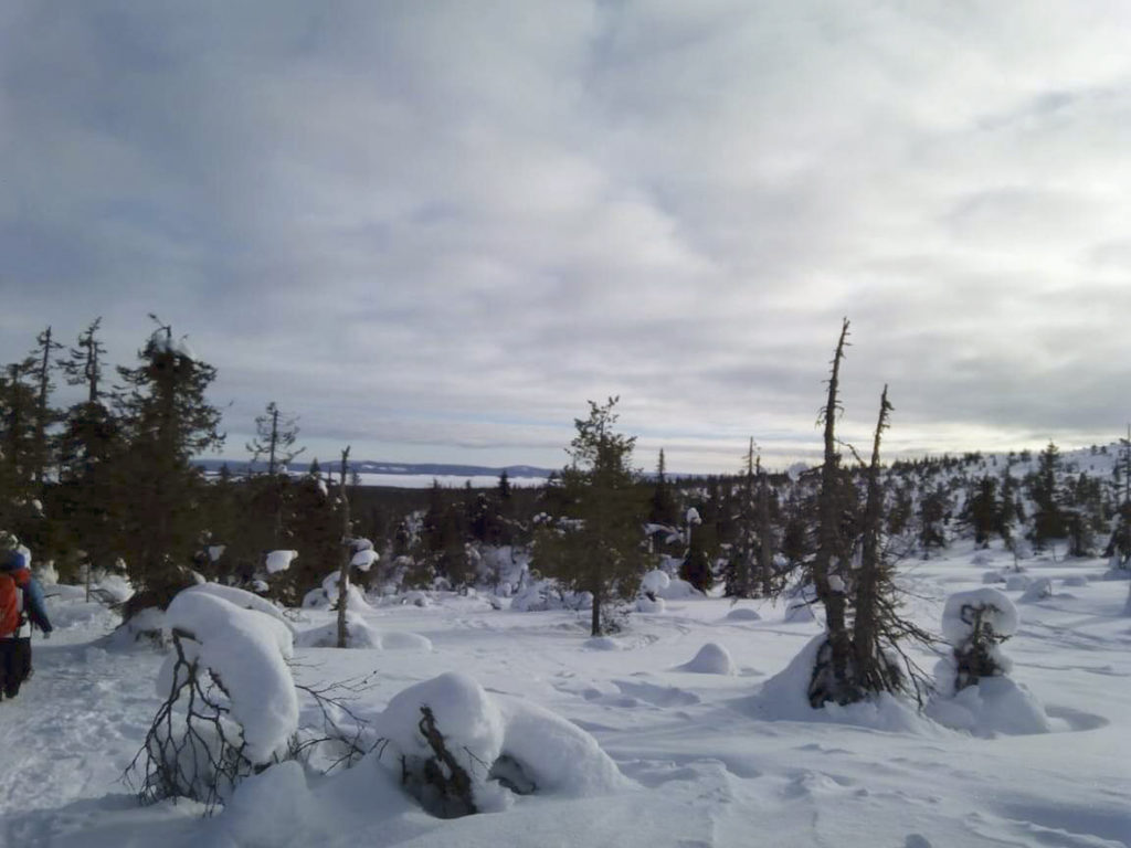 Kaunis talvinen näkymä Riisitunturilta pastellinväristen pilvien peittämän taivaan alla.