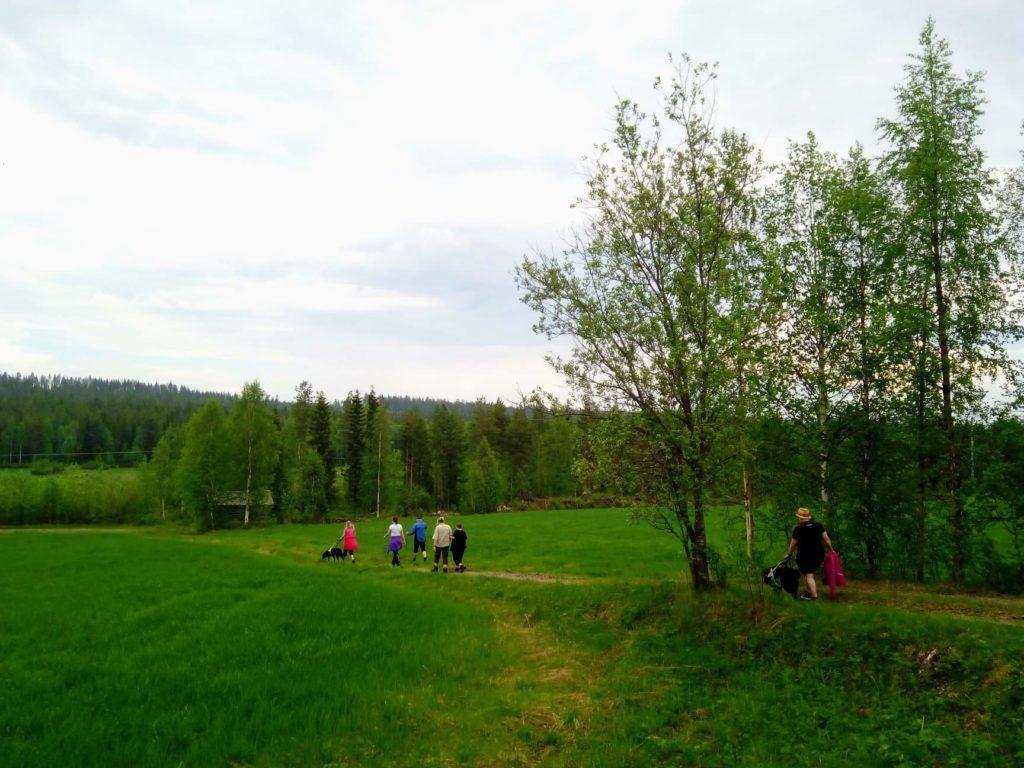"""""""Matka Kotivaaran huipulle alkaa Seikkailuapinoiden majatalon pihasta halki peltojen ja niittyjen. """" Retkeläiset kulkevat vehmaan niityn poikki kulkevaa polkua kohti uusia seikkailuja."""