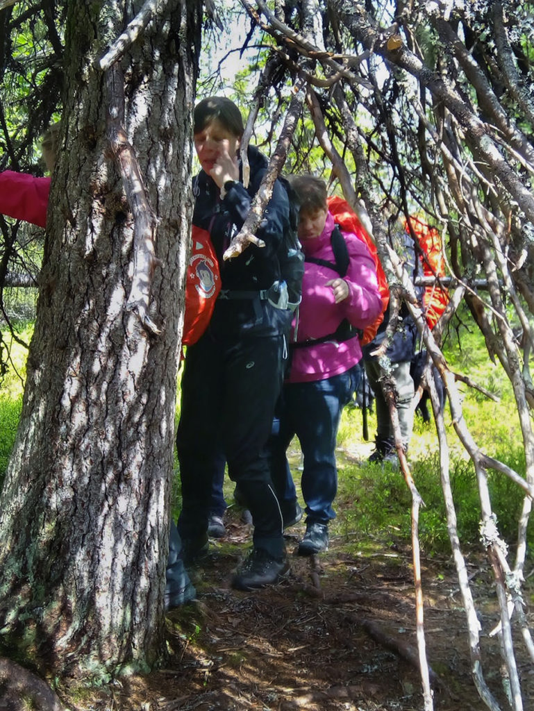Tiivistä tunnelmaa tapionpöydäksi kutsutun vanhan metsäkuusen oksiston suojissa. Puun vaakatasossa kasvavat oksat muodostavat ikäänkuin majan. Puuta tutkimassa Sini, Heidi ja Marianne.