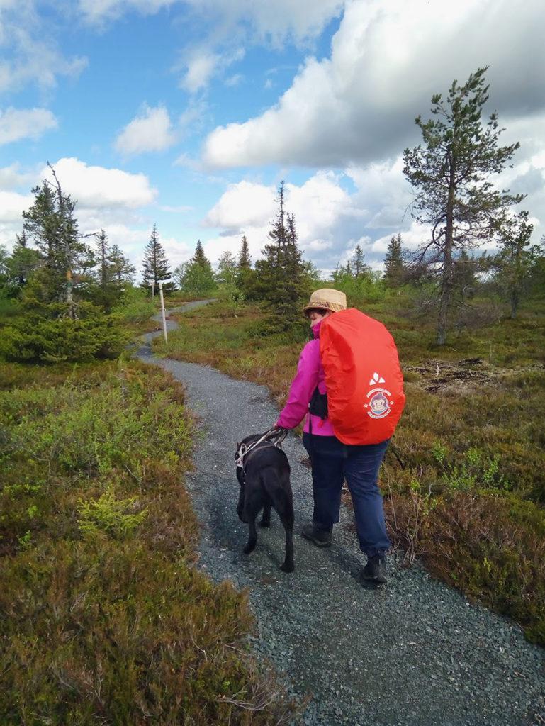 Otto opastamassa Heidiä kivituhkan peittämällä polulla. Polun kummallakin puolella kasvaa tuuheaa varvikkoa ja matalia havupuita.