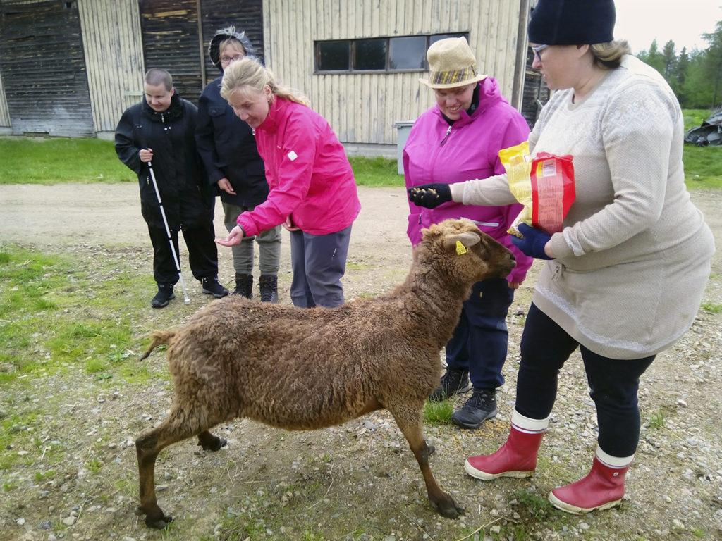 Lammastilan Anne ojentamassa makaroonia Heidille. Ruskea keritty lammas Heidin ja Annen edessä odottaa herkkuja malttamattomana. Mariannella on jo makaroonia kädessään. Outi ja Taija odottelevat vuoroaan.
