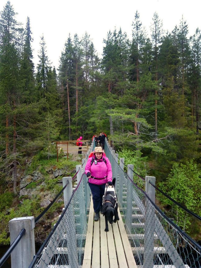 Heidi ja Otto ylittämässä riippusiltaa Niskakosken yllä. Kosken rannat ovat kivikkoiset, jyrkkäreunaiset ja sankan metsän ympäröimät.