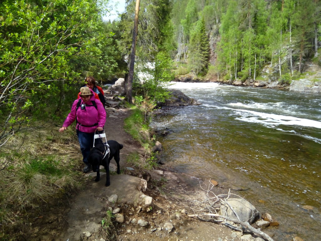 Heidi, Otto ja Sirpa kulkevat kapeaa polkua joka kulkee aivan Jyrävänkosken viertä. Polku ei ole paljoa korkeammalla kuin koski joka   uoman keskikohdalla virtaa vuolaana kuohuen. Joen reunoilla kohoaa korkea kallio jonka rinteillä kasvaa tiheää sekametsää.