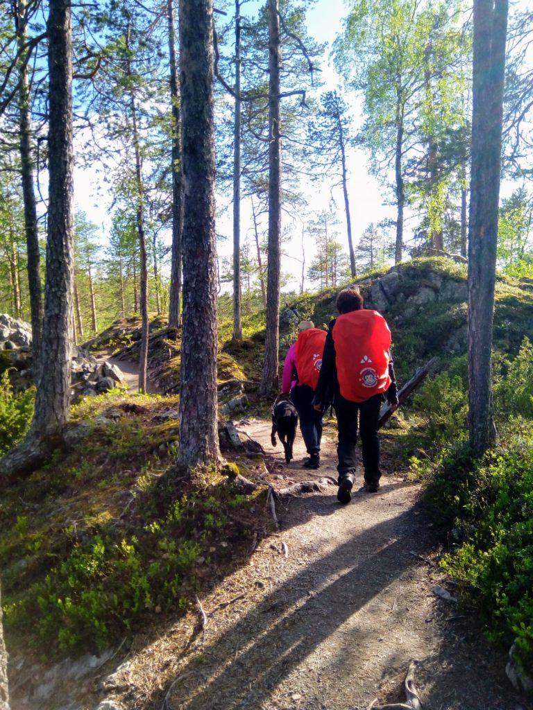 Otto, Heidi ja Sirpa kulkevat pienten kalliokumpareiden ja mäntyjen välissä kiemurtelevaa polkua.